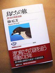 20051104
